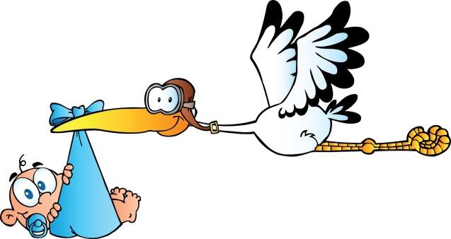 stork_delivering_a_newborn_baby_boy